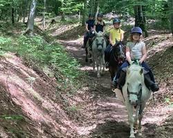Balade poney - Remiremont - Le Sarcenot à Poney